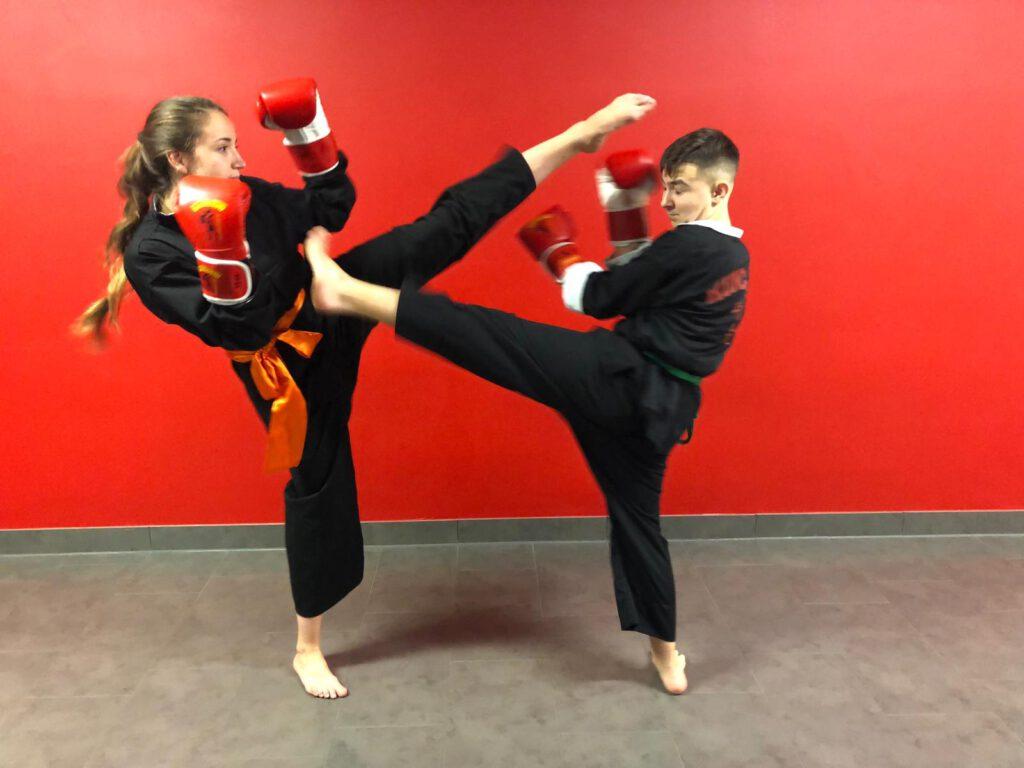 shaolin kung fu sadeghi
